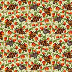 Monarchs and Lantana