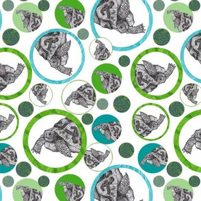 Tortoises in Green and Blue Circles