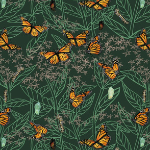 nature journal: monarch + milkweed