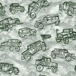 Jeep 4x4 trucks in the  Mountain