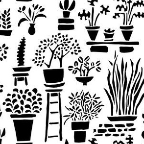 Black and White Potted Plants