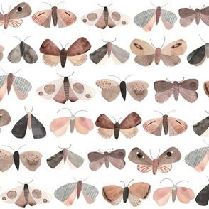 Paper moths