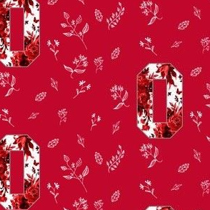 O is for Ohio Red