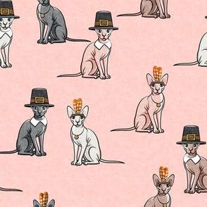 Thanksgiving  Sphynx Cat  - Pink - LAD19