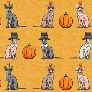 Thanksgiving Sphynx Cat  w/ pumpkin - Golden Fall - LAD19