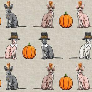 Thanksgiving Sphynx Cat w/ pumpkin - Beige - LAD19