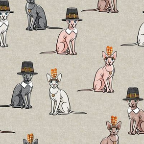 Thanksgiving  Sphynx Cat  - Beige - LAD19