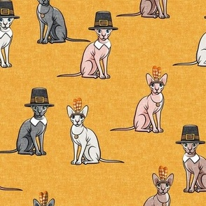 Thanksgiving  Sphynx Cat  - Fall Orange - LAD19