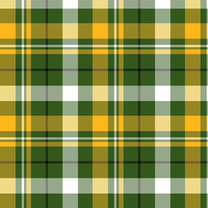 Green and Yellow Plaid 1