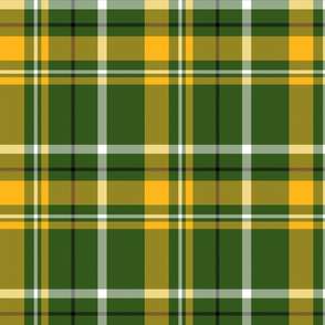 Green and Yellow Plaid 2