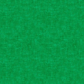Solid woven green - Cats and Cookies Coordinate - C19BS