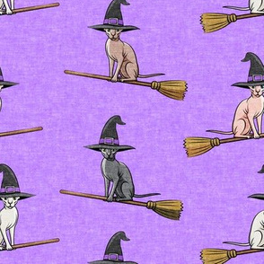 Witch Hats -  halloween sphynx - Sphynx Cats  - Purple - LAD19