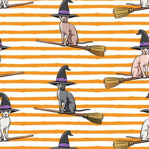 Witch Hats - halloween sphynx -  Sphynx Cats  - Orange Stripes - LAD19