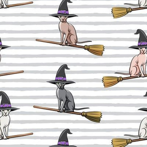 Witch Hats -  halloween sphynx - Sphynx Cats  - Grey Stripes - LAD19