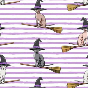 Witch Hats - halloween sphynx -   Sphynx Cats  - Purple Stripes - LAD19