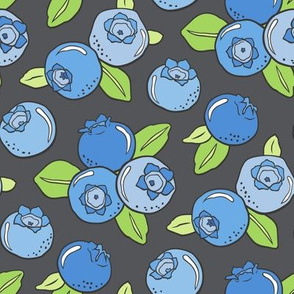 Blueberries Fruit on Dark Grey