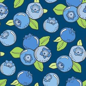 Blueberries Fruit on Dark Blue Navy
