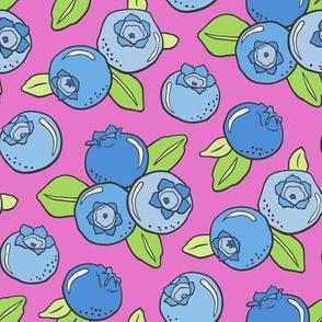 Blueberries Fruit on Magenta Pink