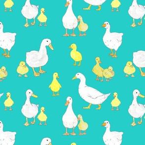 Dotty's ducks and goose