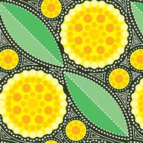 Australia Golden Wattle