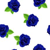 Jewel blue single rose on white