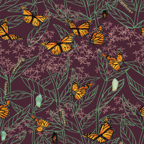 monarch + milkweed: plum