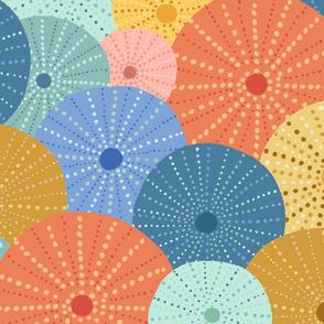 Colorful Sea Urchin - Large