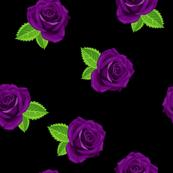 Jewel purple single rose on black