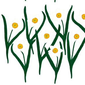 Narcissus - Spring Flowers design
