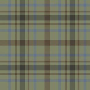 """MacDonagh tartan - 10"""" faded"""