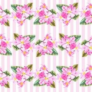 Frangipani Small Print-Pink Stripes