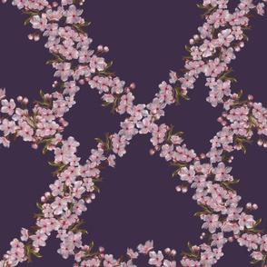 Sakura at Midnight