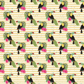 Cute Toucans