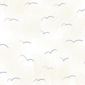 Seagulls on White