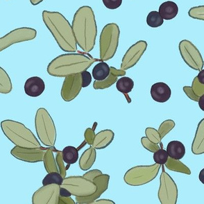 Large Scale Huckleberries on Blue