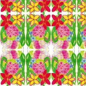 Rrraustralia-flora_ed_shop_thumb