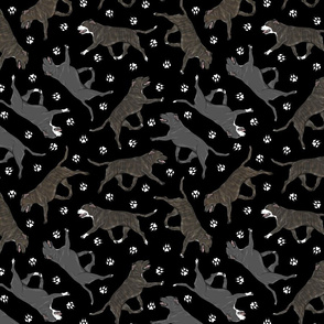 Trotting brindle and black Staffordshire Bull Terriers and paw prints - black