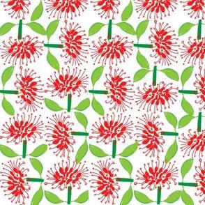 FLOWER OF AUSTRALIA -1