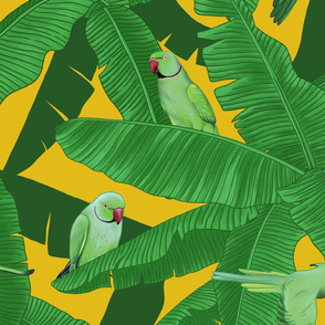 Tropical Green Parrot Birds on Banana Leaves - Yellow