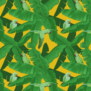 Tropical Green Parrot Birds on Banana Leaves