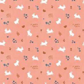 Coral Pink bunnies