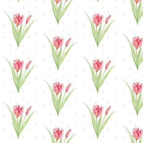 Tulip Sprinkles