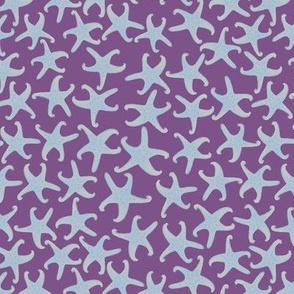 Starfish on purple