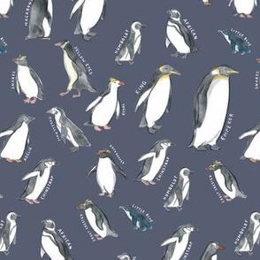 Medium Scale World Penguins on Dusty Blue