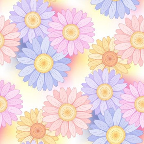 color daisies