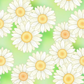daisies on green