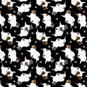 Trotting Phalene and paw prints - black