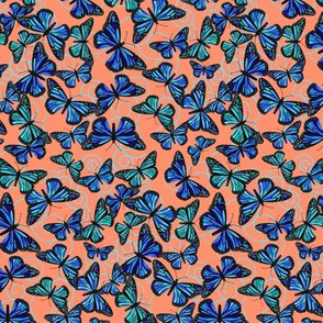 Butterfly Blues on Light orange extra small