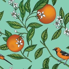 Orange Birds and Fruit Tree Botanical - Teal Green - Large Version
