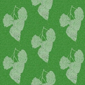 Ghost Leaves on Lime